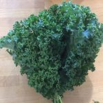 Curly Kale Bunch