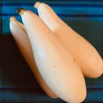 'Cube of Butter' Yellow Squash