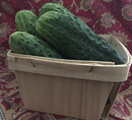 Small 'Pickling' Cucumbers